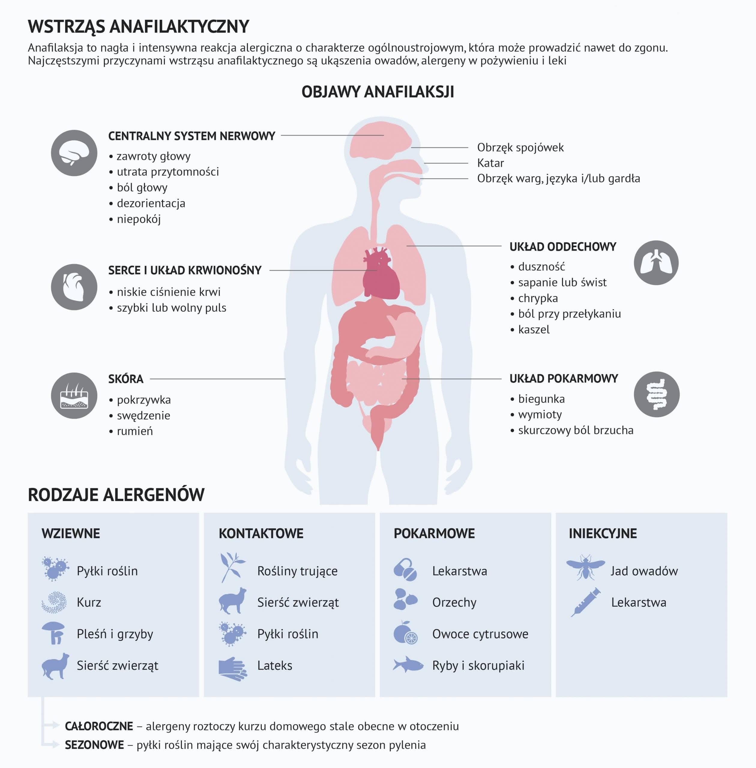 Alergie wziewne, krótka charakterystyka 2