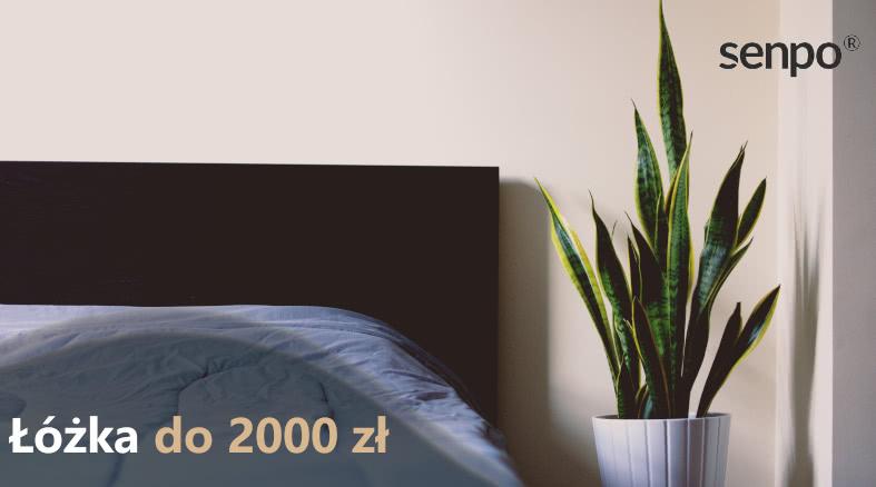 lozka 2000 blog